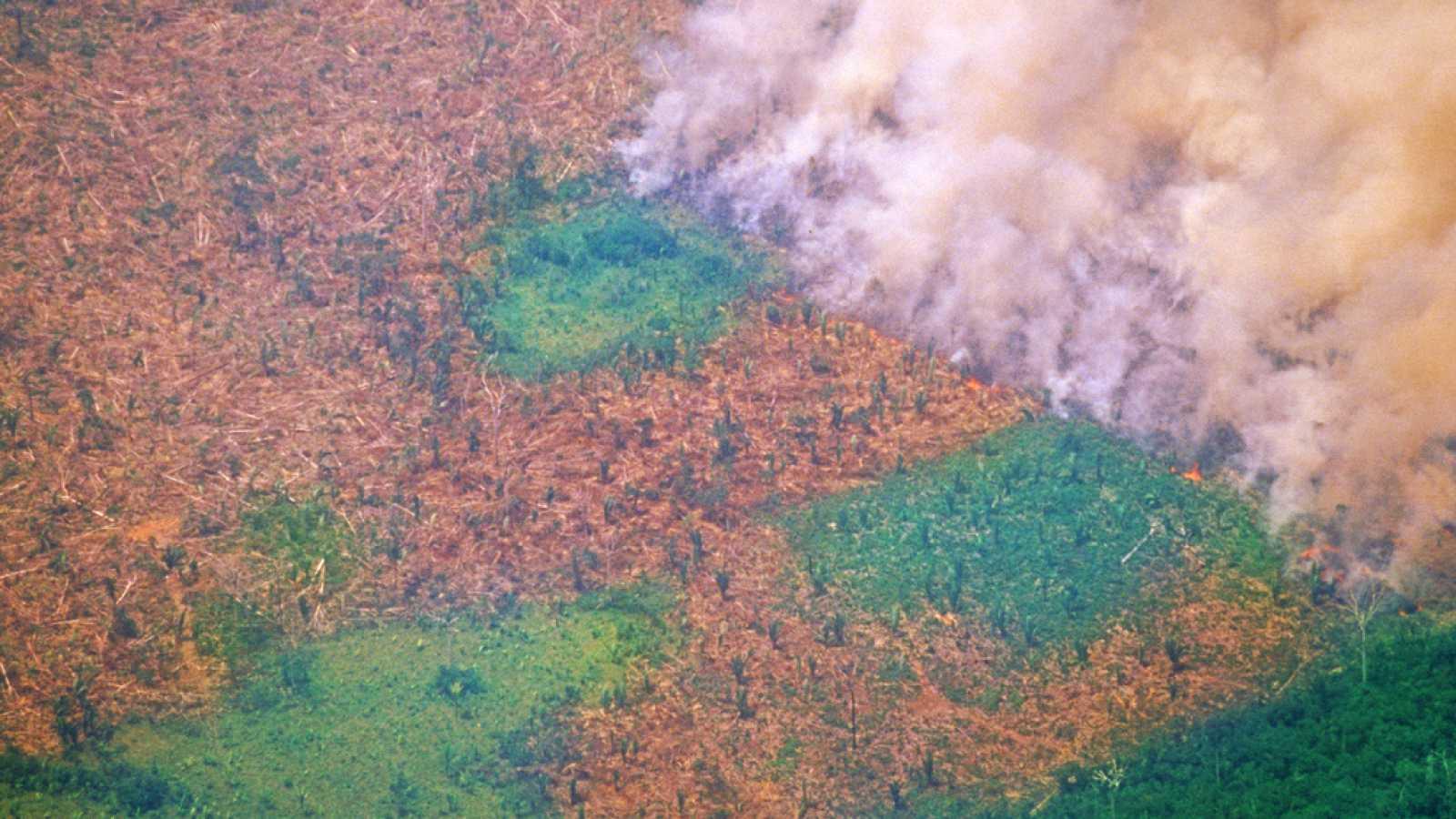 Arde la región del Amazonas - Escuchar ahora