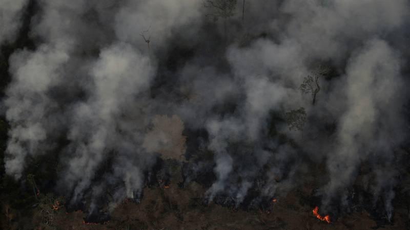 Cinco continentes - La Amazonía brasileña arde - Escuchar ahora