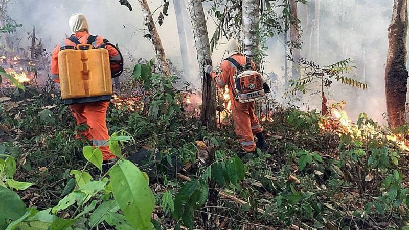 Todo Noticias - Mañana - La selva amazónica, una de los pulmones del planeta, sigue ardiendo - Escuchar ahora