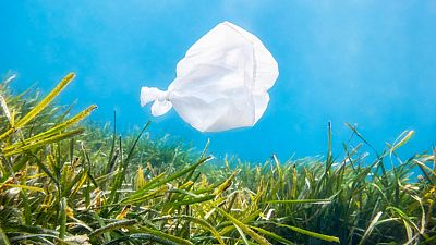 Planeta vivo - La contaminación por microplásticos ya ha alcanzado el Ártico - 11/09/19 - Escuchar ahora