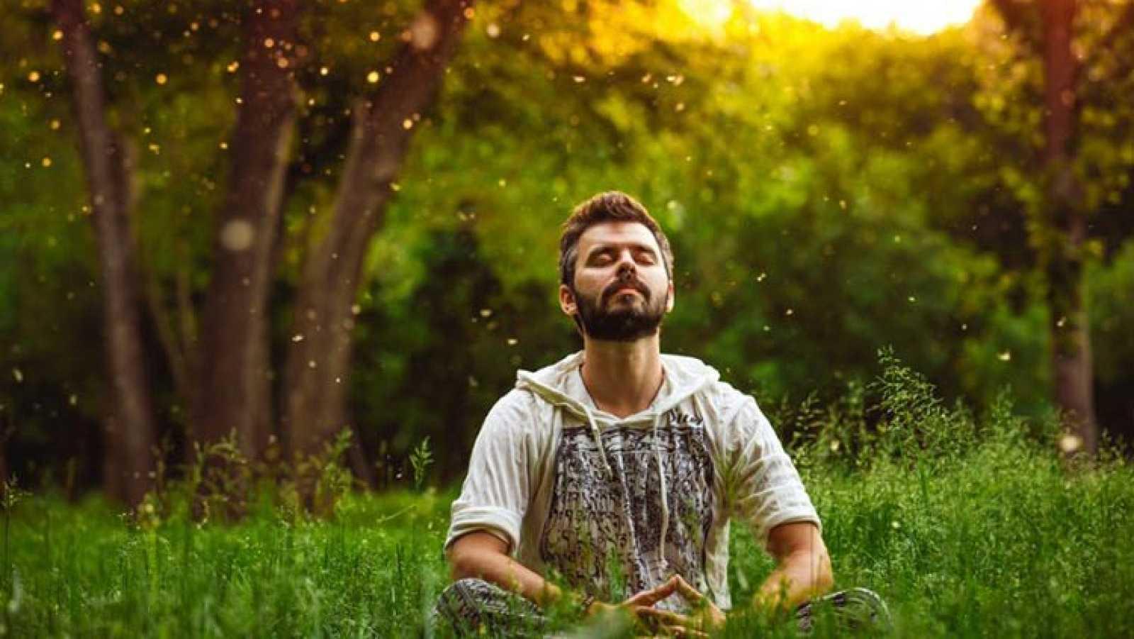 Vida verde - Árboles y comunidades sostenibles - 14/09/19 - Escuchar ahora