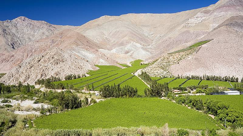 Crónicas de un nómada - El Valle del Elqui, un oasis en el desierto de Atacama - 10/11/19