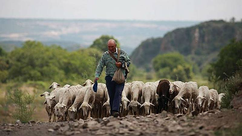 """Agro 5 - """"COP25 y la sostenibilidad agroalimentaria"""" - 7/12/19 - Escuchar ahora"""