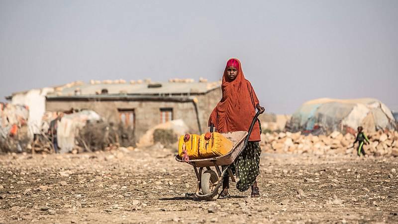 14 horas - Millones de personas en riesgo por la grave sequía en el sur de África - Escuchar ahora