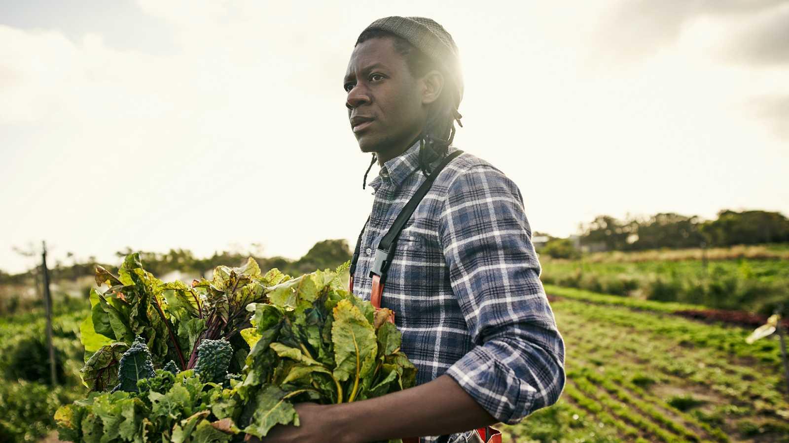 El mundo desde las Casas - Trabajo decente en África - 16/01/20 - Escuchar ahora