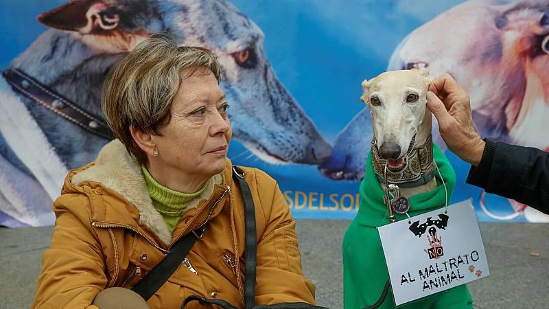 """14 horas fin de semana - Manifestaciones en España con el lema """"No a la caza"""", exige una Ley que vele por los perros - Escuchar ahora"""