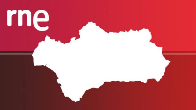 Parlamento andaluz - 15/02/20