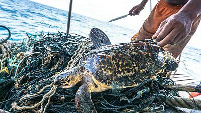 Planeta vivo - Pescadores de Badalona - 04/03/20 - Escuchar ahora