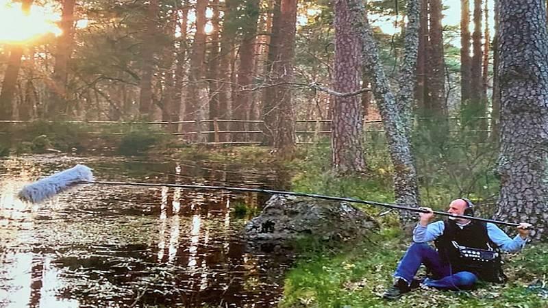 Sin atajos - Viaje sonoro por los bosques de España - 09/03/20 - escuchar ahora
