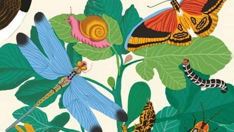 Vida verde - El lenguaje secreto de la naturaleza - 07/03/20 - escuchar ahora