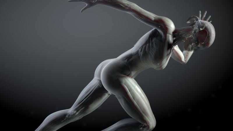 Entre probetas - Órganos en 3D: la biomedicina del futuro ya es presente - 12/03/20 - escuchar ahora