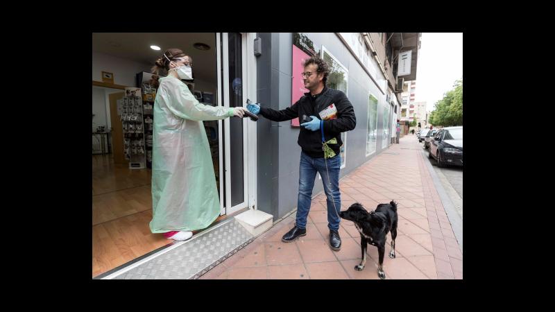 Todo noticias tarde - Gran parte de la seguridad alimentaria depende de los veterinarios - Escuchar ahora