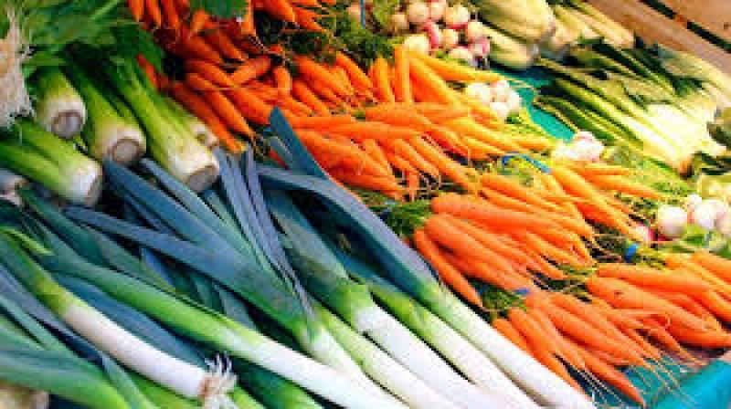 Secció de Carme Ruscalleda, parlem de múrgoles, conill i colors