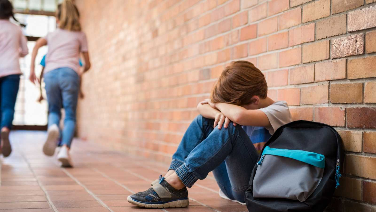 Memoria de delfín - Acoso escolar: retrato de víctima y agresor - 02/05/20 - escuchar ahora