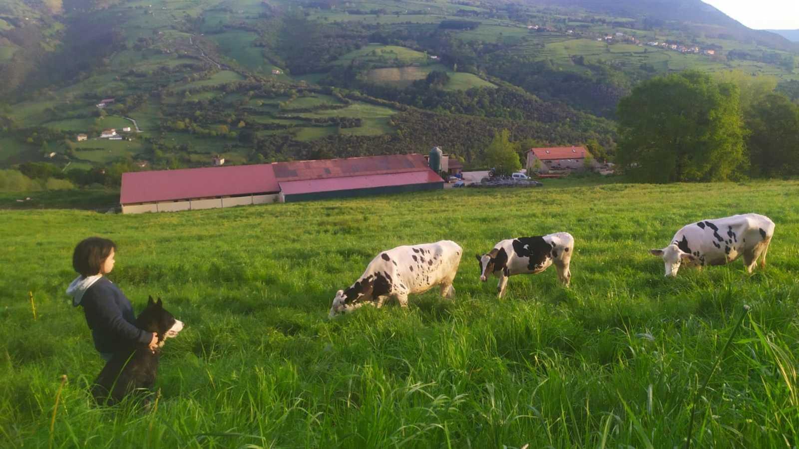 Por tres razones - La odisea de unos ganaderos con coronavirus - 06/05/20 - escuchar ahora
