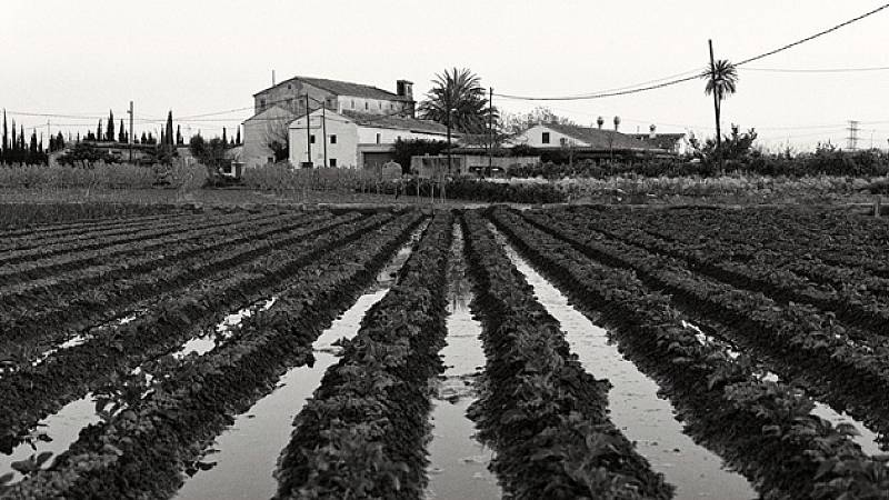 Mediterráneo - Agricultura Al-Andalus - 10/05/20 - escuchar ahora