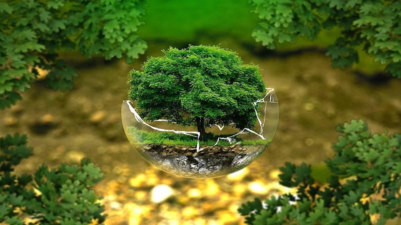 La LiBéLuLa - Día Mundial del medio ambiente 2020 - 05/06/20 - escuchar ahora