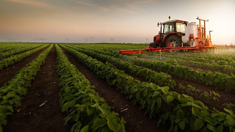 Mundo rural - Proceso de reconstrucción en la agricultura tras la pandemia - 05/06/20 - Escuchar ahora