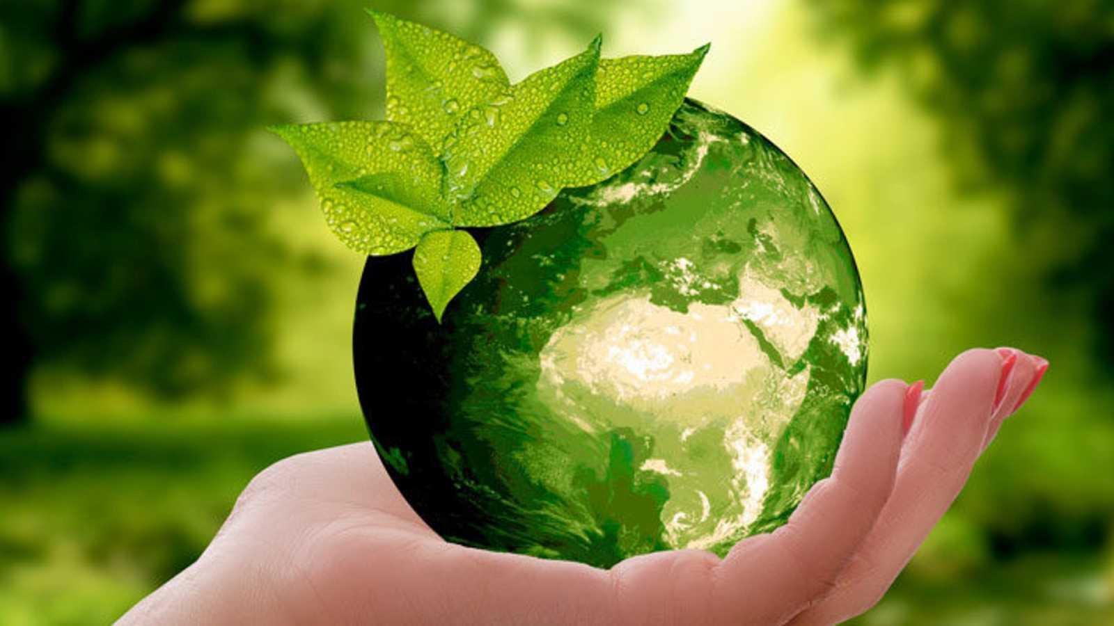 Miradas al exterior - Día Mundial del Medio Ambiente - 07/06/20 - Escuchar ahora