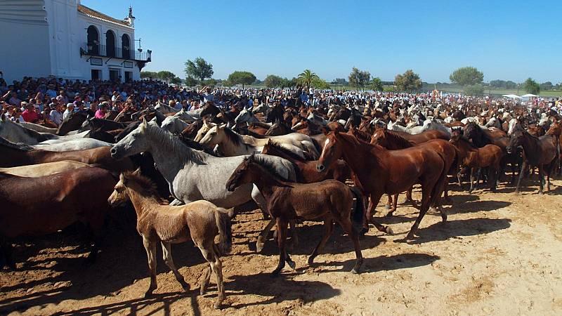 Reportajes Emisoras - Huelva - La Saca de Yeguas - 19/06/20 - Escuchar ahora
