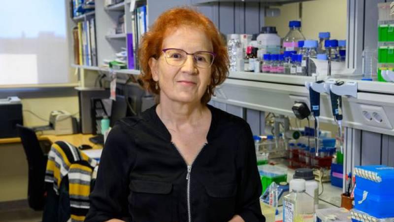 """Artesfera - Margarita del Val: """"La investigación en España, se ha considerado un lujo"""" - 09/07/20 - escuchar ahora"""
