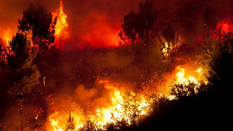 Mundo rural - Prevención de incendios forestales - 10/07/20 - Escuchar ahora