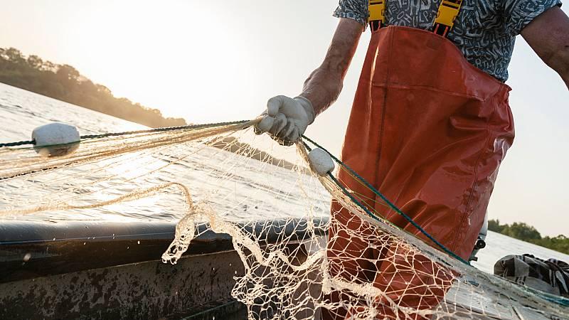 Mundo rural - Sector pesquero - 31/07/20 - Escuchar ahora