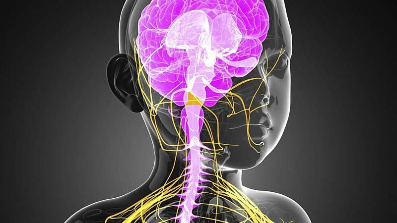 Mamas y papas -  Trastornos neurológicos - 08/08/20 - Escuchar ahora