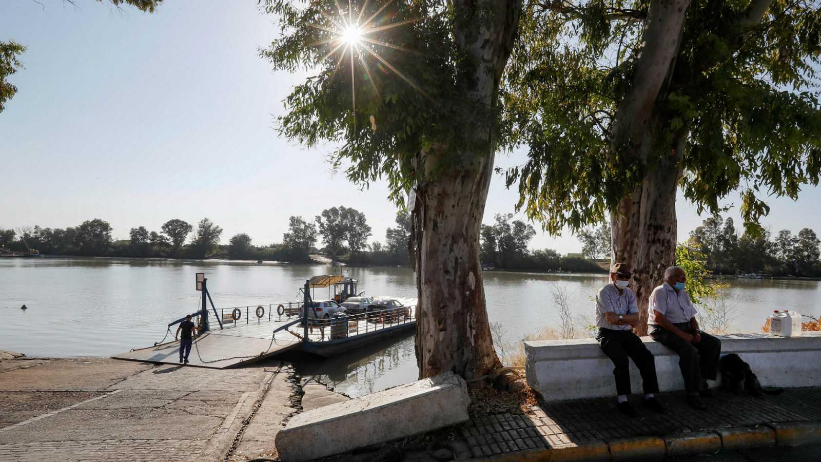 14 horas - La Junta confirma que un tipo de mosquito está detrás del brote de meningoencefalitis en Sevilla - Escuchar ahora