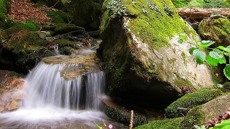 Caminantes - Siete puentes del río Usaya - 02/09/20 - Escuchar ahora