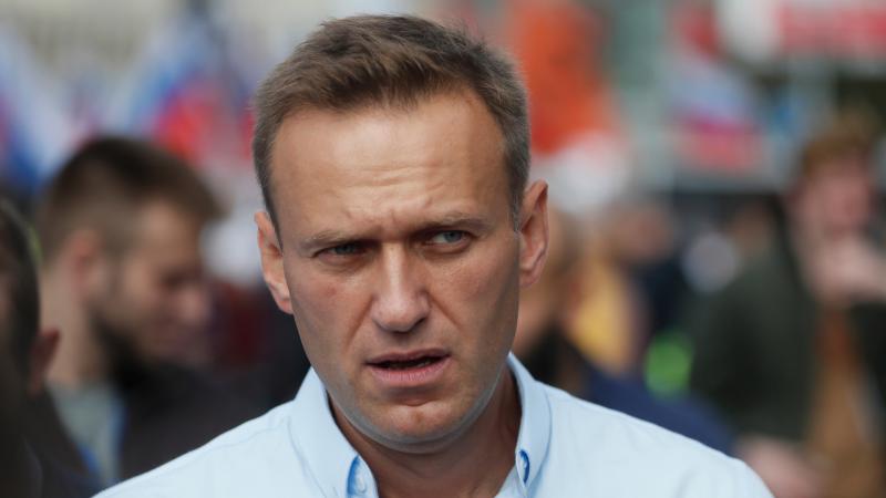 El caso Navalny y sus posibles consecuencias