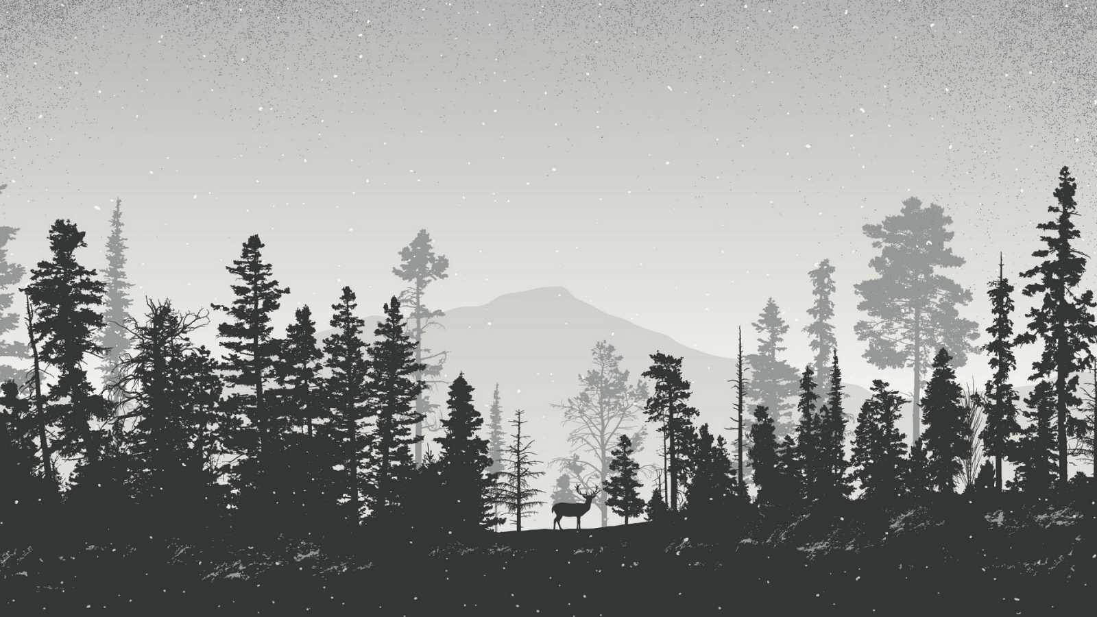 Reserva natural - 'No es un mundo cualquiera', el universo en blanco y negro de Eduardo Crespo - 10/09/20 - Escuchar ahora