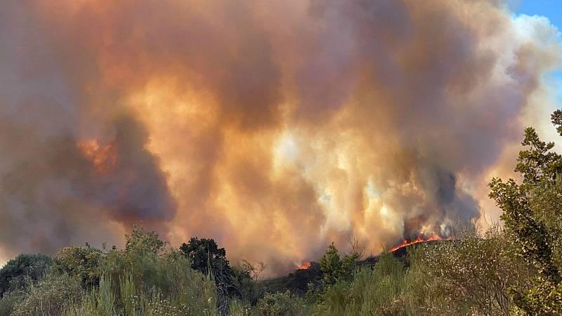 14 horas - 11 incendios activos han quemado ya más de 6.000 hectáreas en Ourense - Escuchar ahora