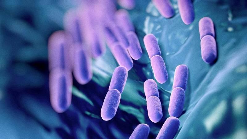 No es un día cualquiera - Probióticos - Julio Basulto - 'Vida sana' - 20/09/2020 - Escuchar ahora