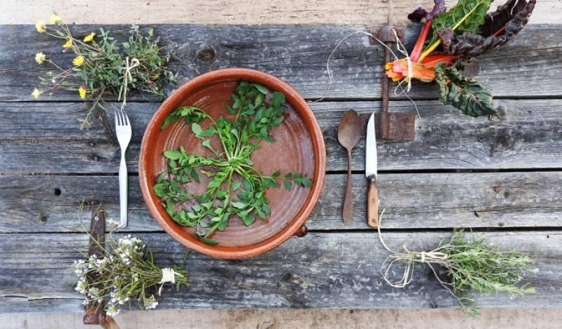 En Directe a Ràdio 4 - Eixarcolant. Recuperar plantes per canviar el model agrari i de consum