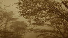 Sonideros: Luis Lapuente - Vientos de otoño: el tiempo amarillo - 27/09/20
