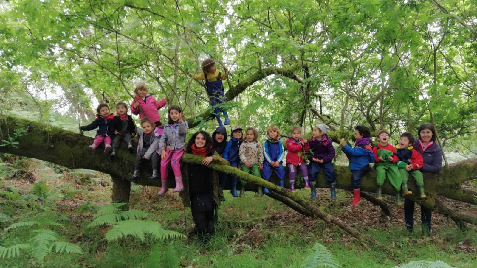 Sin atajos - Niños y Naturaleza: aprender sin riesgo - 28/09/20 - escuchar ahora