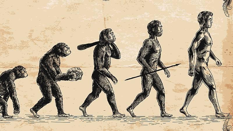 Mas ciencia - Grandes extinciones masivas - Escuchar ahora