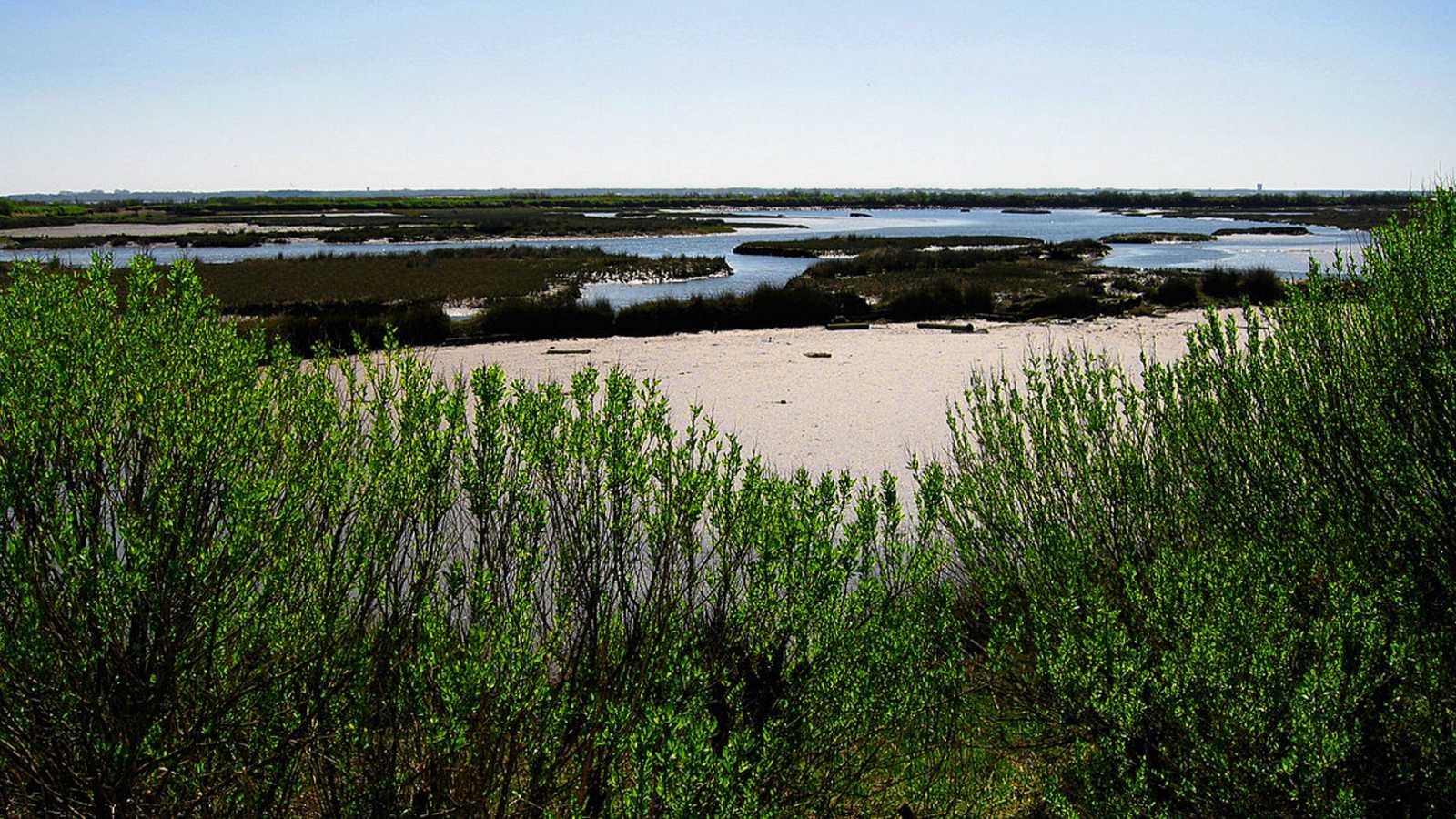 Mediterráneo - SOS Costa Brava y Areas Protegidas del Mediterráneo - 04/10/20 - escuchar ahora