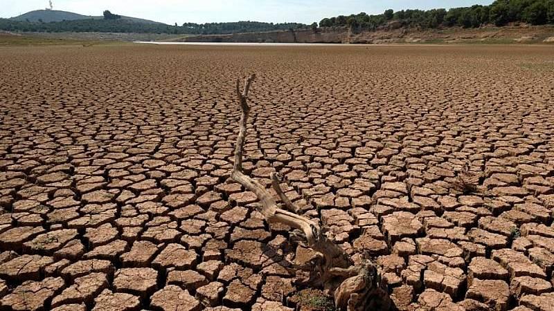 Reportajes 5 Continentes - Tensiones por el agua entre México y Estados Unidos - Escuchar ahora