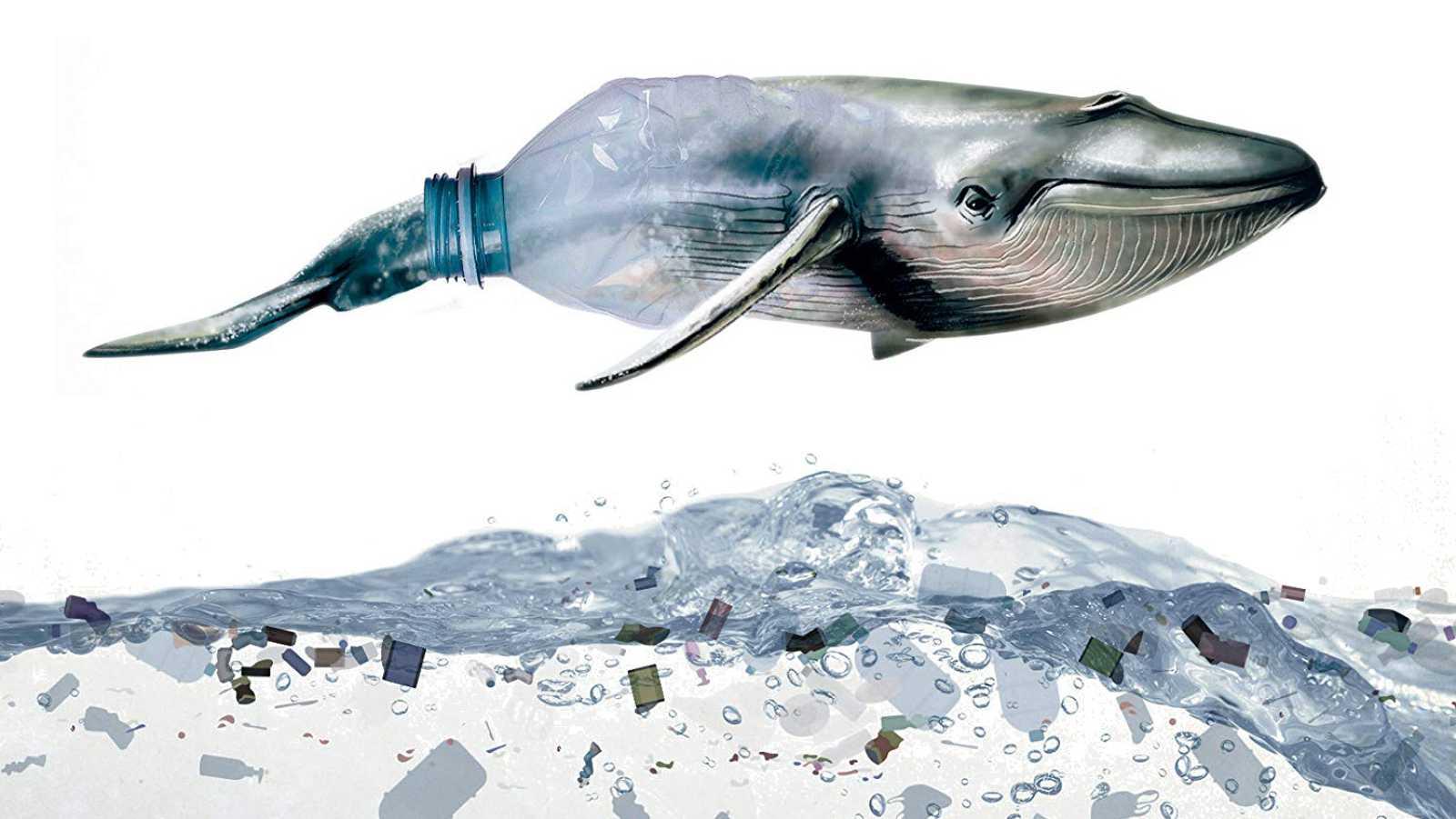 Vida verde - La Era del Plástico - 10/10/20 - escuchar ahora
