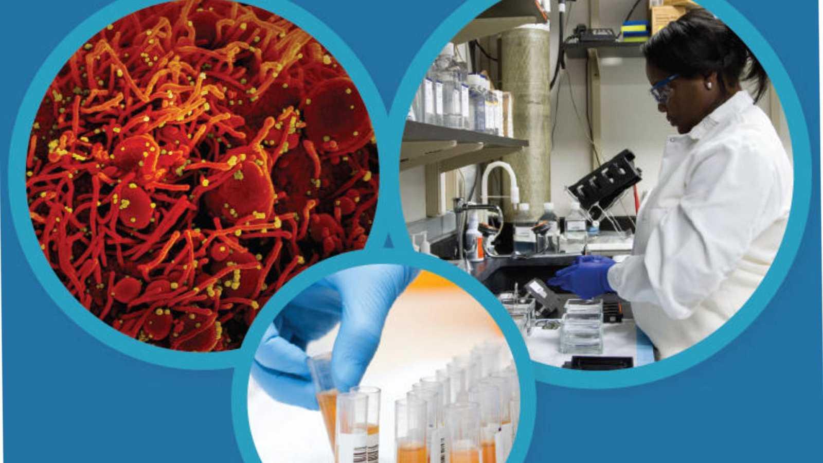 Alianza 2030 - Covid-19 en la investigación contra el cáncer - 11/10/20 - Escuchar ahora
