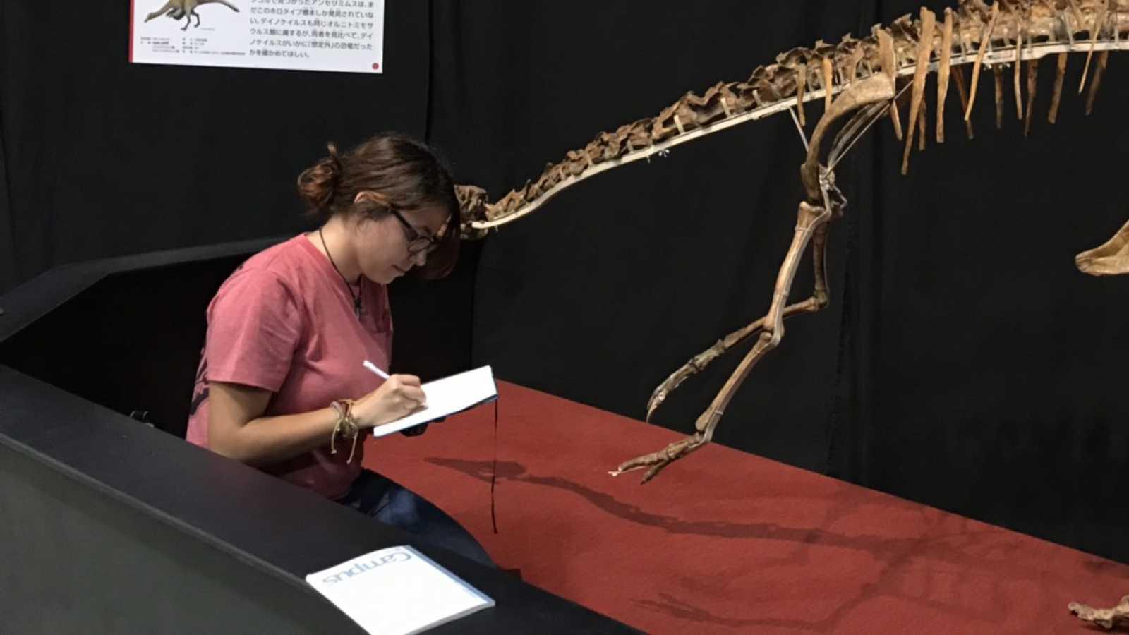 Punto de enlace - Elena Cuesta Fidalgo y su pasión por los dinosaurios - 13/10/20 - escuchar ahora