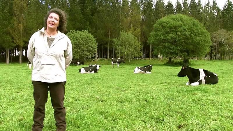 """Las mañanas de RNE con Íñigo Alfonso - Día de la Mujer rural: """"Siempre hemos estado en el campo, pero ahora empezamos a ser visibles"""" - Escuchar ahora"""