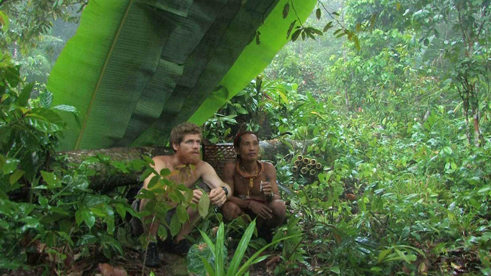 Reserva natural - Octubre, mes de festivales de cine ambiental - 15/10/20 - Escuchar ahora
