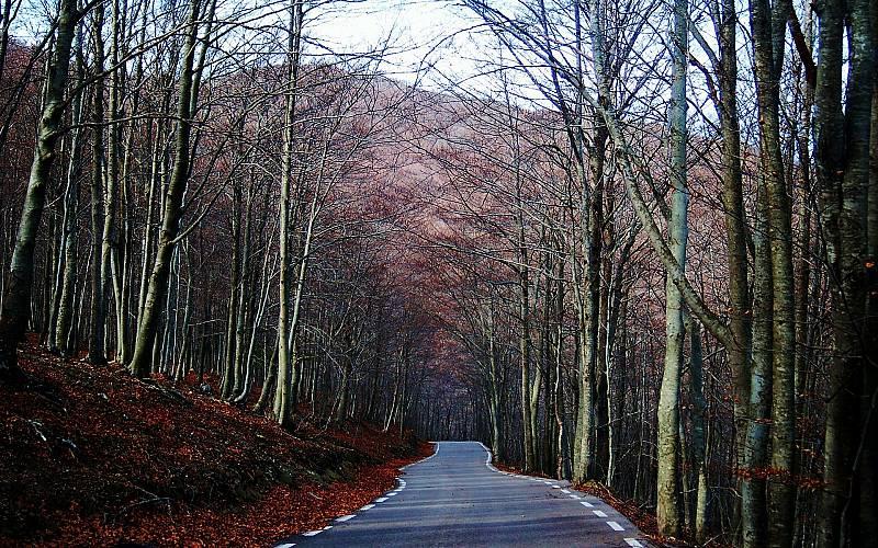 Restriccions per anar al Parc Natural del Montseny