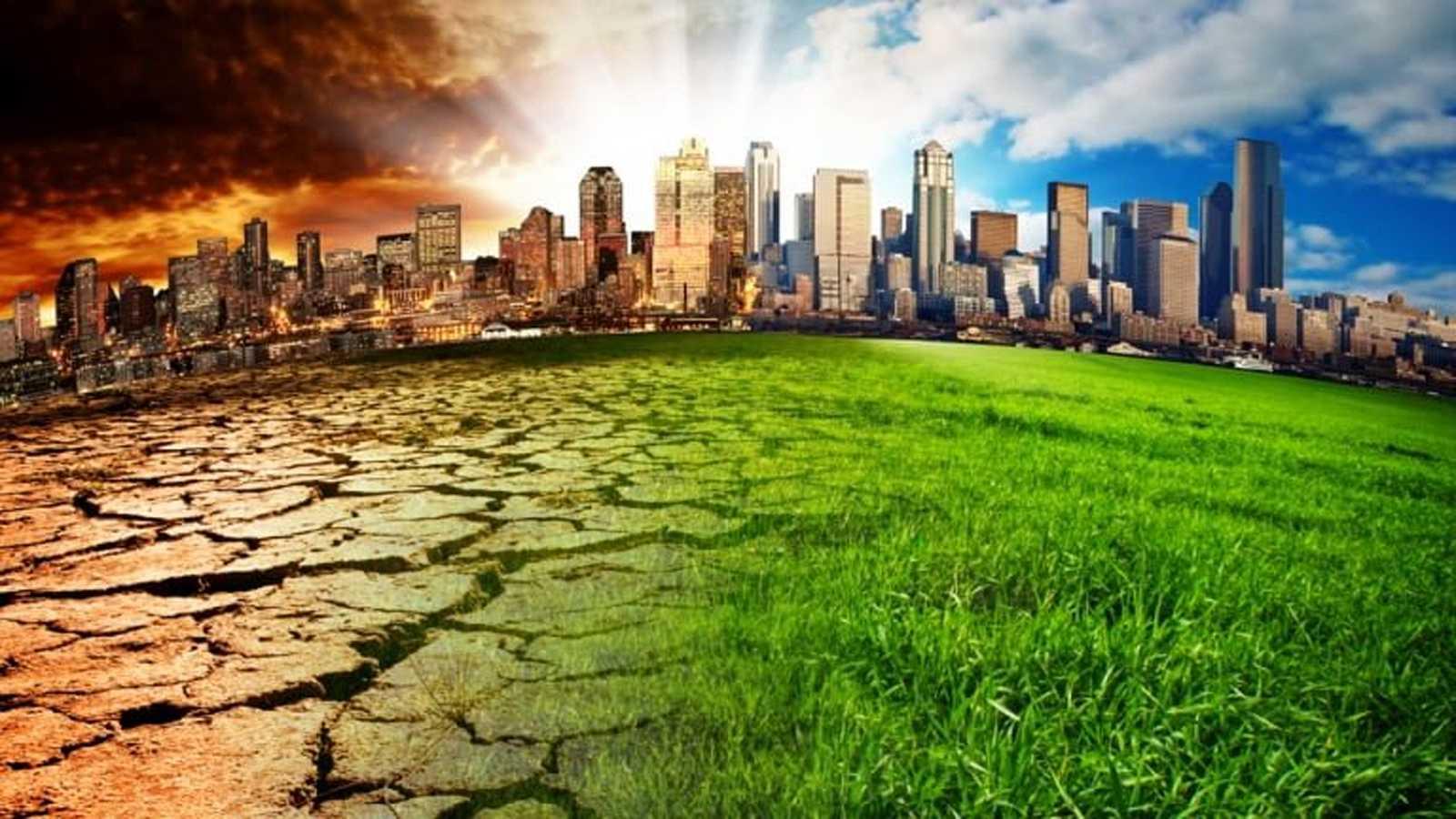 Vida verde - Emergencia climática, contaminación y biodiversidad - 31/10/20 - escuchar ahora
