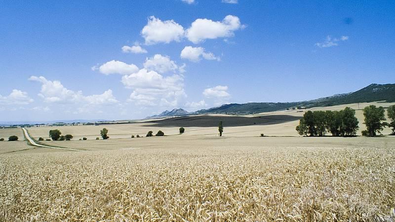 Por tres razones - 'Meseta', un viaje sensorial por la España vaciada - 05/11/20 - escuchar ahora