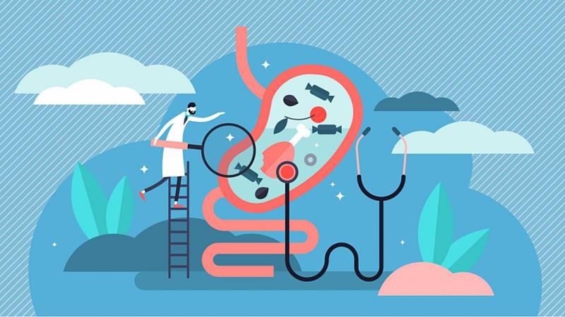 Alimento y salud - Microbiota y cocina de aprovechamiento 5 - 08/11/20 - Escuchar ahora
