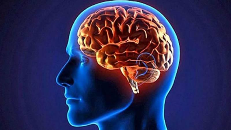 Por tres razones - ¿Qué tenía el cerebro de Einstein que lo hacía especial? - 16/11/20 - escuchar ahora